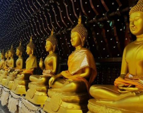 斯里兰卡Ceyline游记的佛教朝圣之旅